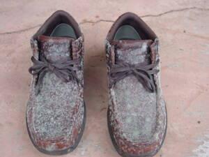 靴がカビに覆われてしまって、びっくり。