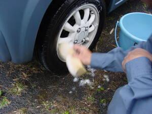 スポンジにシャンプーをつけて洗う。