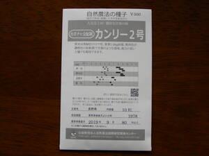カボチャの種、10粒500円。